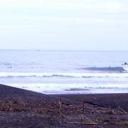 Fun Surf �E�Night Cruising Live