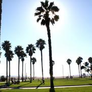 California TRIP part1 -Surf編-