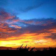 Morning Glow.......