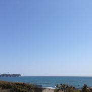 天気いいし 海行きたいね~
