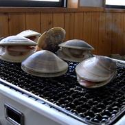 午後の片貝