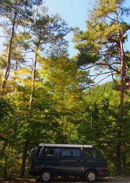 Happy Camper 紅葉キャンプ